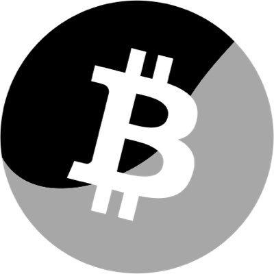 Bitcoin Incognito Logo