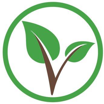 Vitae Coin Logo
