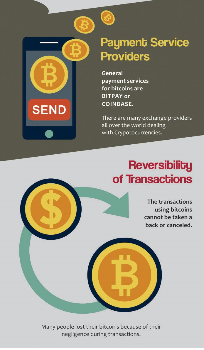 Picture 13 - Bitcoin Infographic