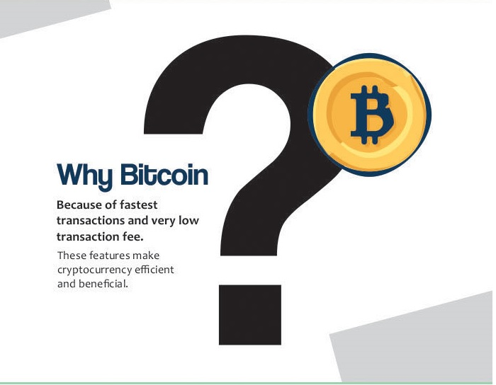 Picture 4 - Bitcoin Infographic