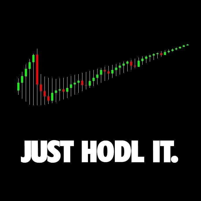 Just Hodl it. Fake Nike Logo