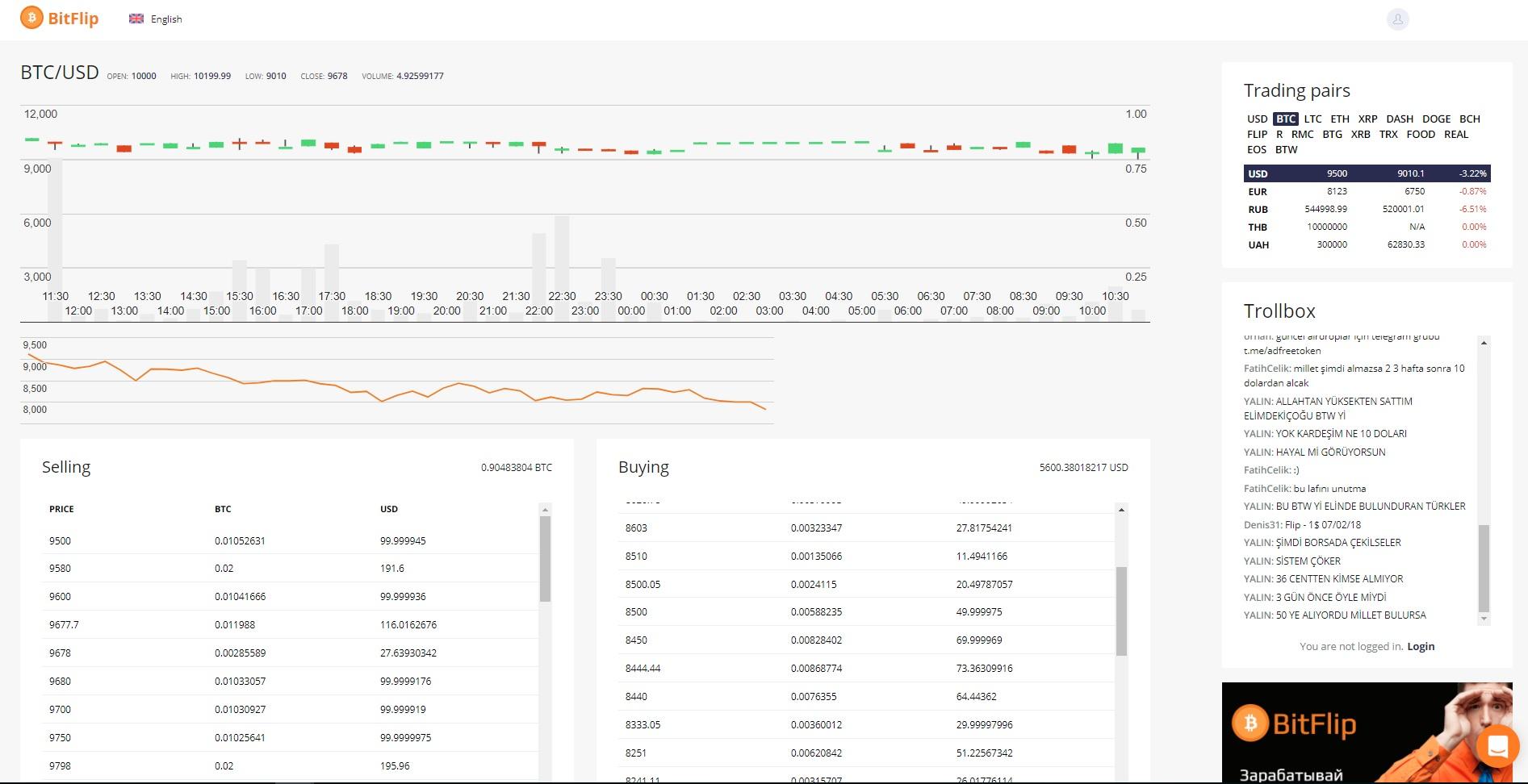 BitFlip Trading View