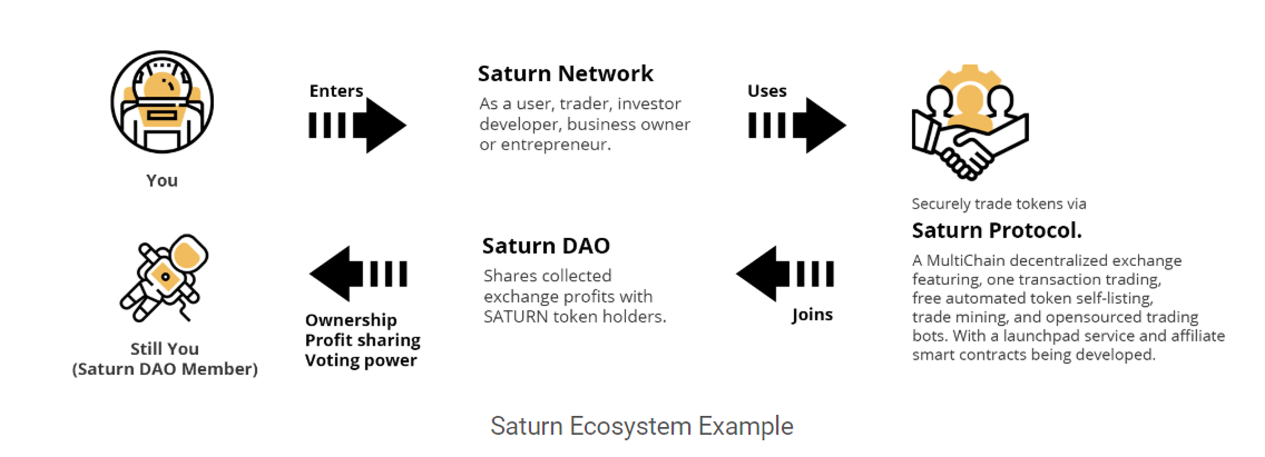 Saturn Network Ecosystem Sample